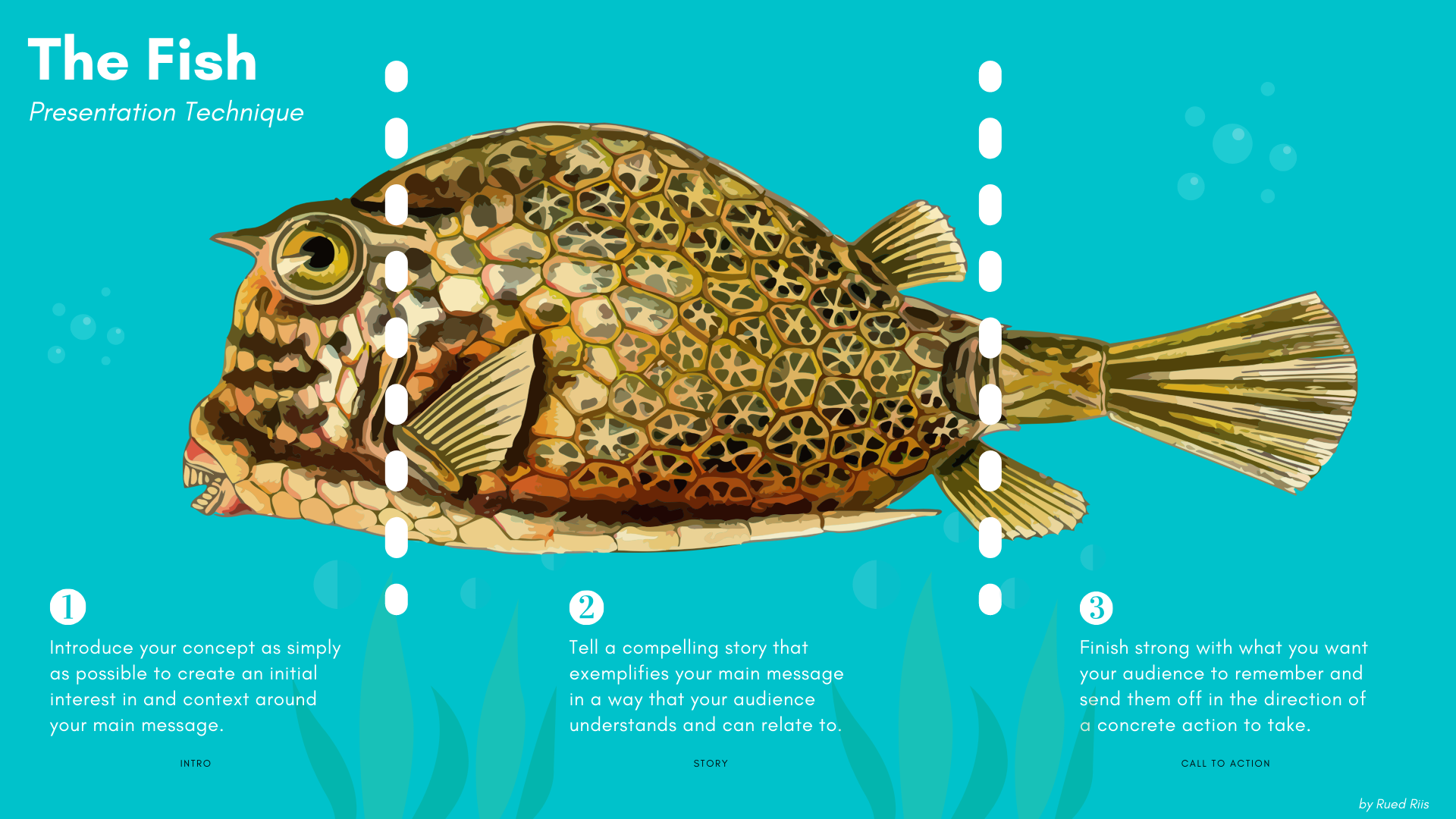 The Fish Script Template